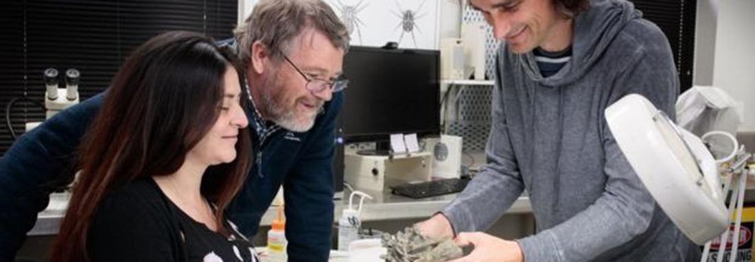 کشف پنگوئنی که هم قد انسان بود ، اظهارات مدیر موزه کانتربری درباره کشف فسیل عجیب پنگوئن