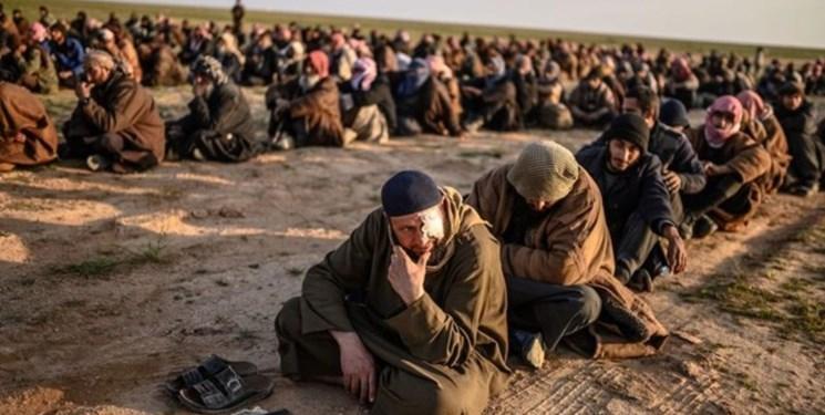 بغداد داعشی های عراقی را می پذیرد