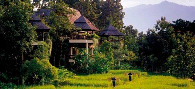 زیباترین کمپ هتل های جهان در کویر، کنار ساحل و جنگل، تصاویر