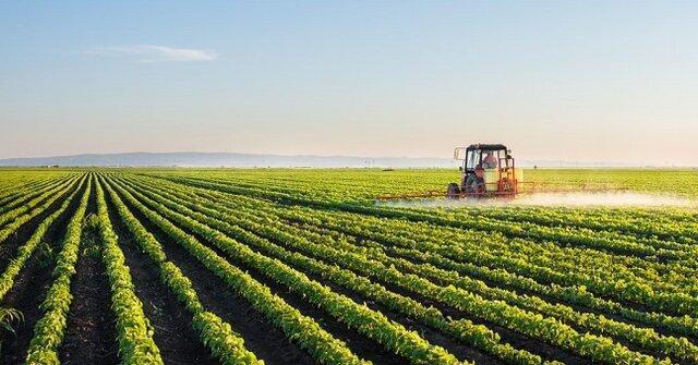 قانون اصلاح قانون تضمین خرید محصولات اساسی کشاورزی ابلاغ شد