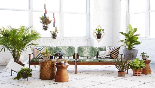 7 دلیل استفاده از گل و گیاه در دکوراسیون خانه