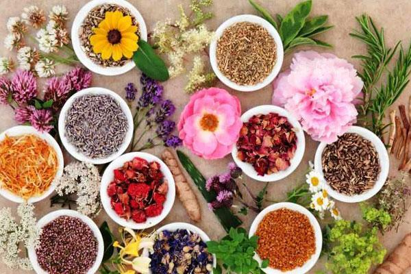 طرح های کارآفرینانه گیاهان دارویی درجهت بومی سازی محصولات حمایت می شوند
