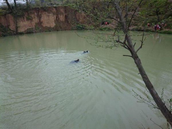 ادامه جستجو برای یافتن جسد جوان غرق شده در چشمه گل رامیان